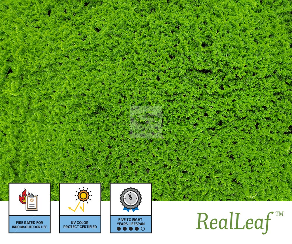 Artificial Evergreen Moss Product