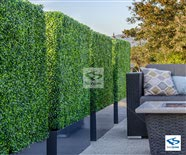 UV Rated Outdoor Boxwood Hedge with Planter Box