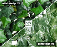 NatraHedge Faux Ivy vs. Others