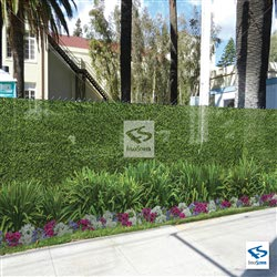 Hedge Fence Murals