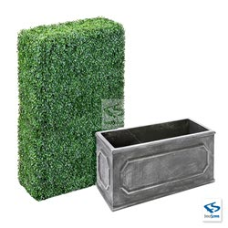 "6' Tall Boxwood Hedge Wall with 15"" tall Charcoal Chateau Traditional Planter Box"