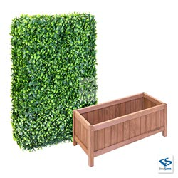 "6' Tall Ligustrum Ficus Hedge Wall with 24"" Tall Hampton Classic Planter Box"