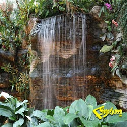 Tropical Garden With Waterfall