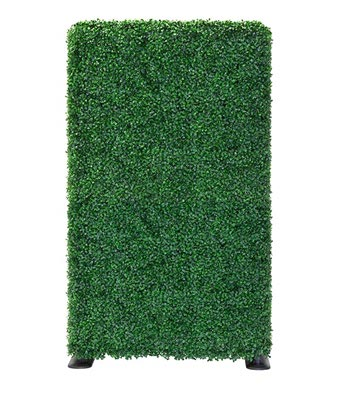 Full Hedge Without Planter Box - Freestanding Boxwood Hedge