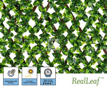 Artificial Ficus Privacy Fence - Commercial NatraHedge® Trellis