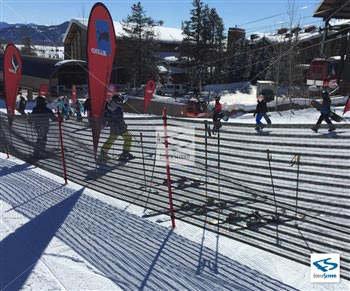 Snow Event Fencing-1400 Series 50%